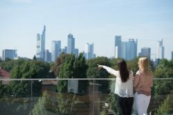 The Frankfurt MBA (full-time)